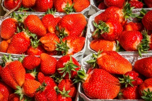 strawberries-2290078_1920